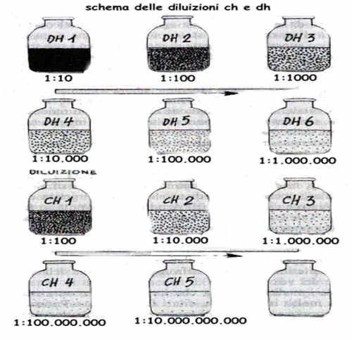 Omeopatia - Schema delle diluizioni