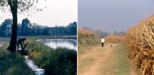 Produzione agricola e nuovi paesaggi