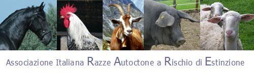 Convegno Associazione RARE