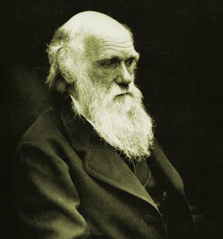 Teorie evoluzionistiche