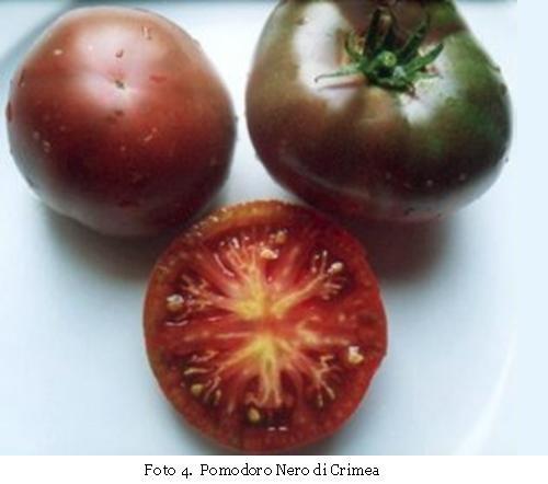 Pomodoro Nero di Crimea