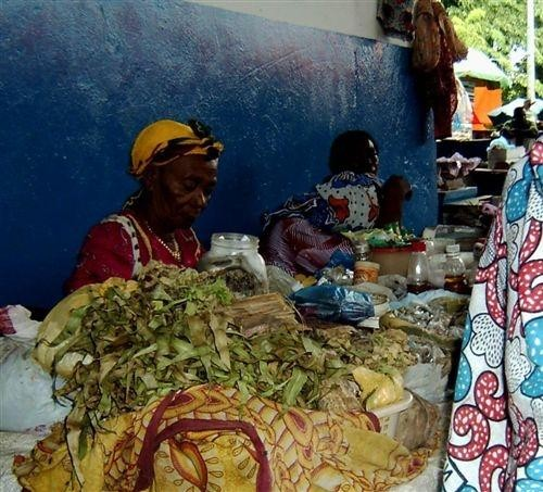 Postazione di venditrice di erbe medicinali della foresta africana