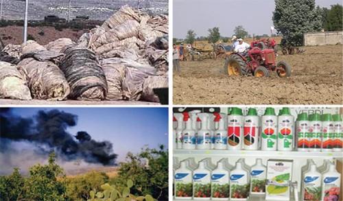 Rifiuti di origine agricola
