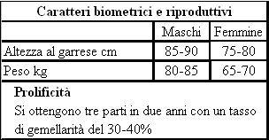 Caratteri biometrici