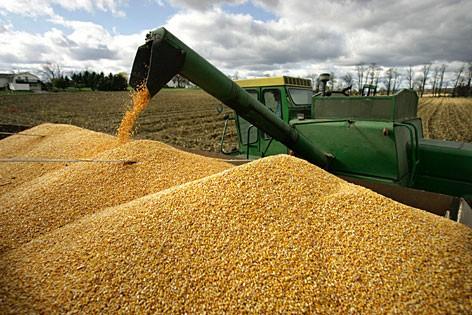 Volatilità dei prezzi internazionali delle derrate alimentari e sicurezza alimentare