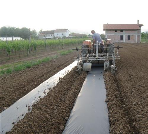 Film biodegradabili  per la pacciamatura del suolo