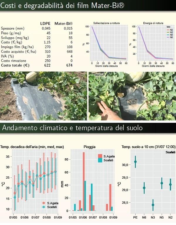 Film biodegradabili nella pacciamatura del melone