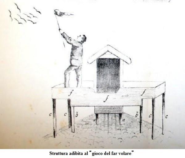 Il colombo Triganino Modenese e l'arte del far volare