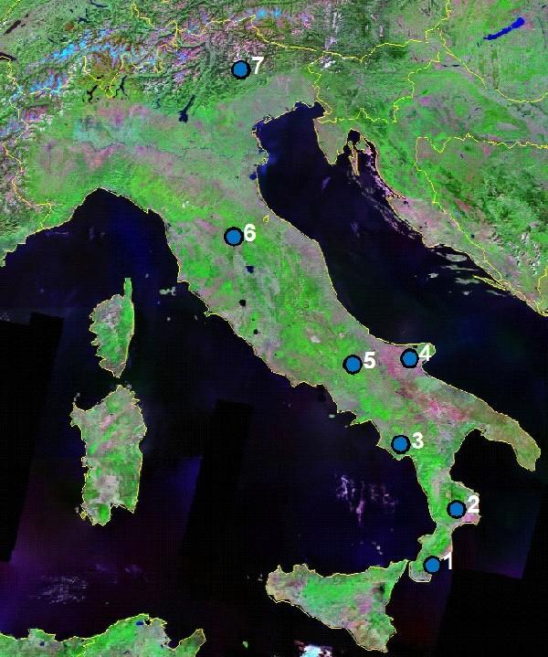 Il Faggio in Italia: dendrocronologia e cambiamenti climatici