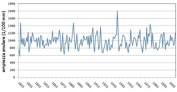 Cronologia media standardizzata del faggio