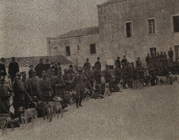 Cani in partenza per la guerra in Libia