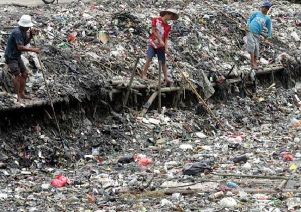 Alterazioni degli equilibri ambientali