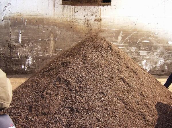 Il compost: fasi e tecniche di compostaggio