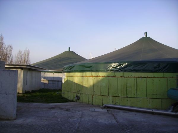 Il Biogas in agricoltura, prospettive e limiti