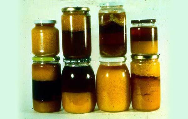 Esempio di miele fermentato