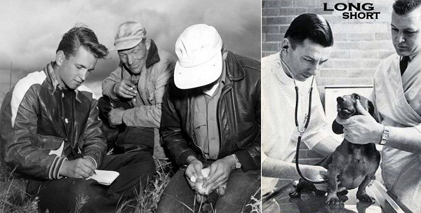 Biologi danesi durante una fase di censimento