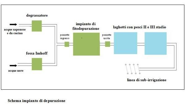 Schema impianto fitodepurazione