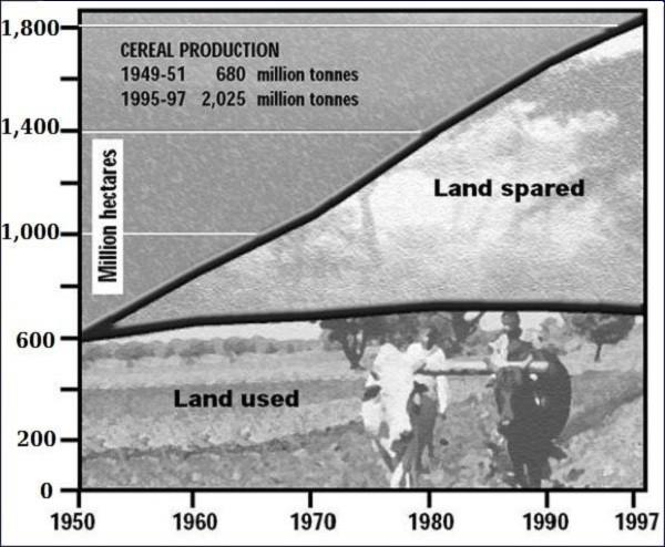 Produzione di cereali nel tempo
