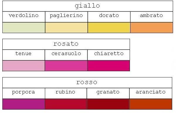 Scala degli 11 colori di base