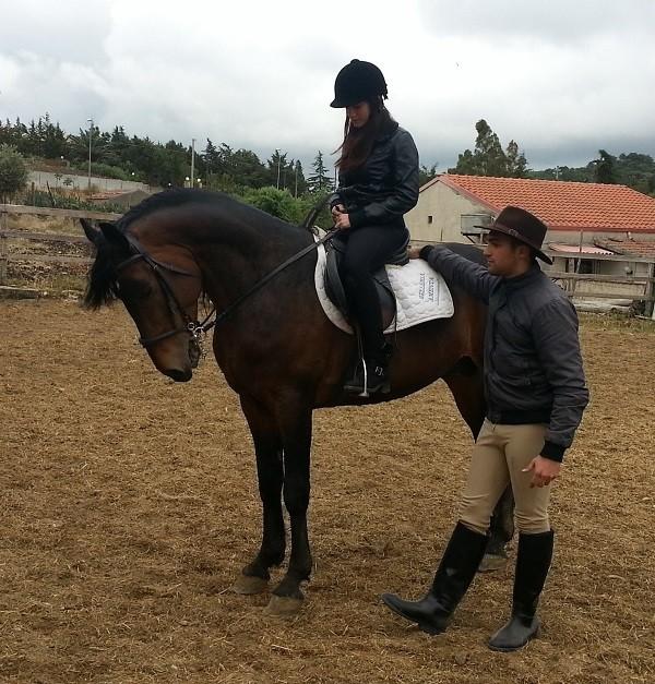 Cavallo da sella Siciliano Indigeno - Zingaro della Rocca