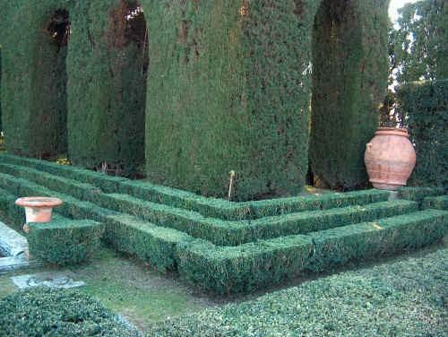 Le Siepi: quando il giardinaggio diventa arte (3^ Parte)
