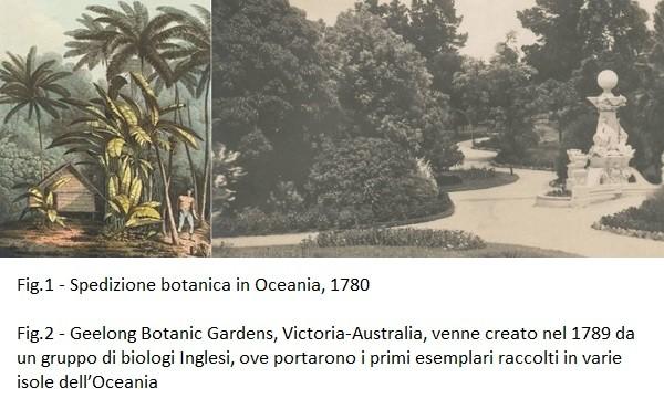 Spedizione botanica in Oceania