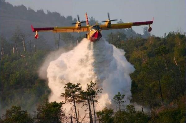 Spegnimento incendio boschivo