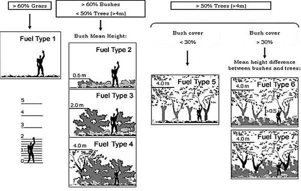 Classificazione dei tipi di combustibile