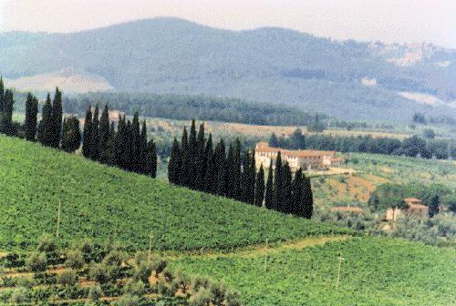 Il vino Chianti, una tradizione che sta scomparendo