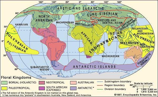 Distribuzione geografica piante