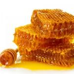 La certificazione del metodo biologico: l'apicoltura