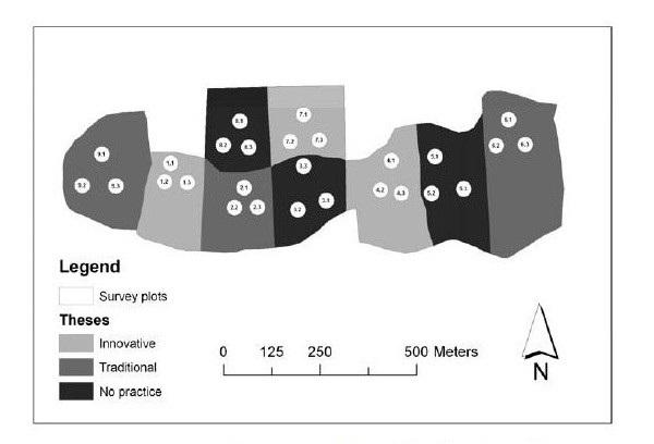Valutazione della Sostenibilità delle Utilizzazioni in Boschi misti di Faggio (Fagus sylvatica L.)