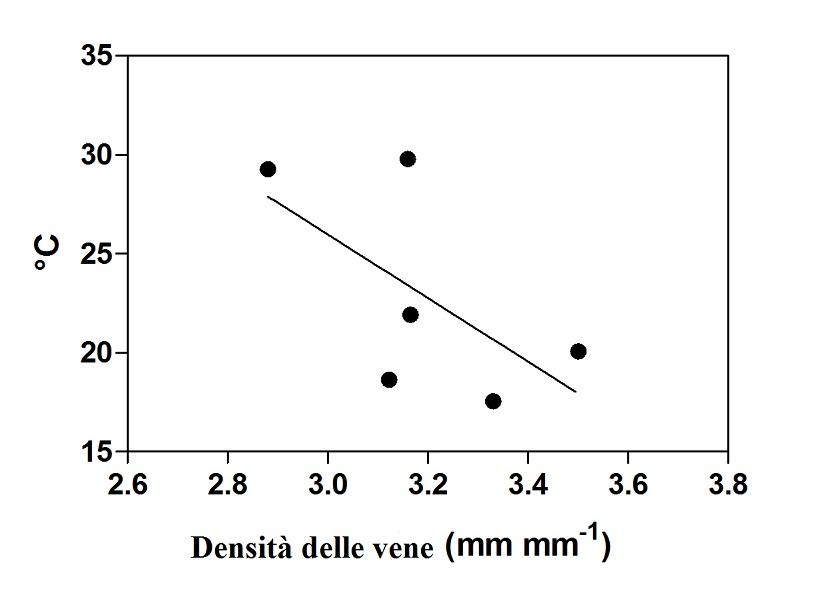 grafico foglie 1