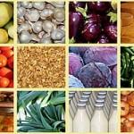 etichette agroalimentare alimenti