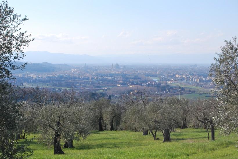 colline Firenze