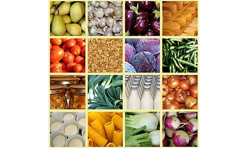 etichettatura alimenti regolamento UE