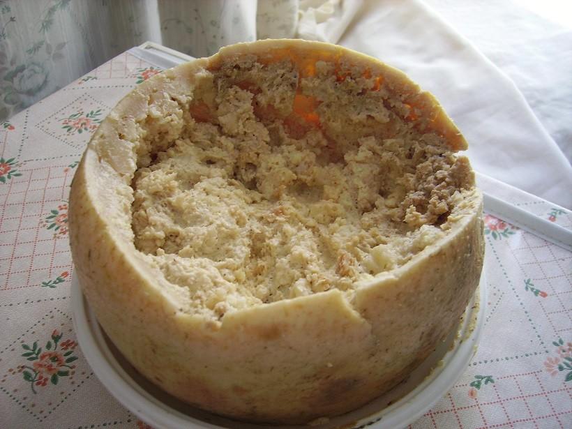 Casu frazigu formaggio sardo mosche