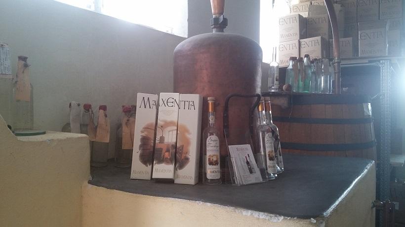 maxentia distilleria grappa trento