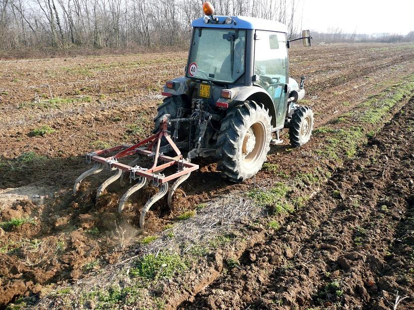 lavorazione terreno asparago