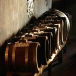 Alcune nozioni sull'Aceto Balsamico Tradizionale di Modena