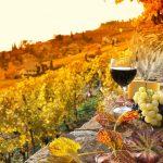 Il vino e il marketing esperienziale