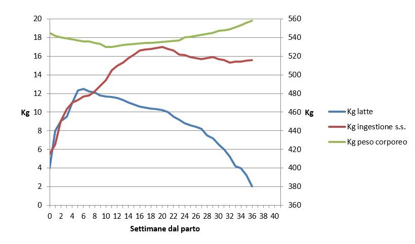 curva lattazione bufala