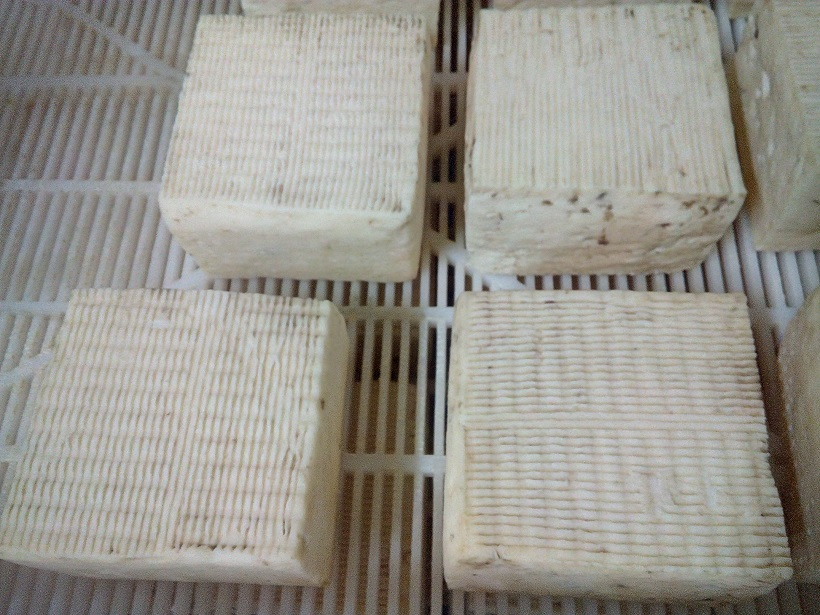 formaggio fatto in casa crosta lavata ad una settimana