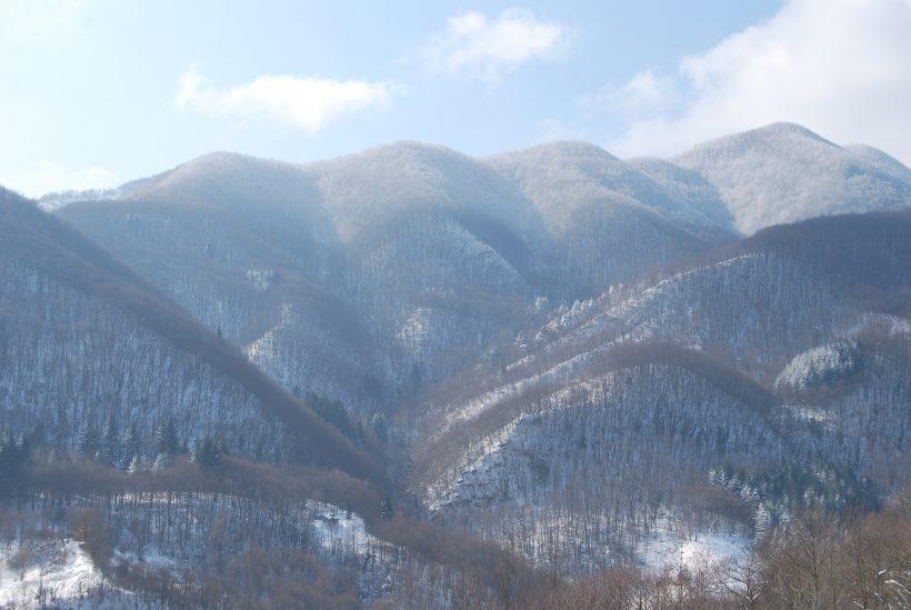 boschi Rasora Castiglione dei Pepoli Bologna appennino bolognese neve foresta