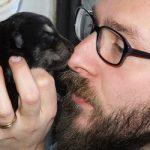 Il Cane Lupo di Saarloos NERO: nessun mistero, solo genetica!