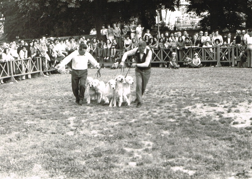 allevamento cani ring onore expo canina anni 70