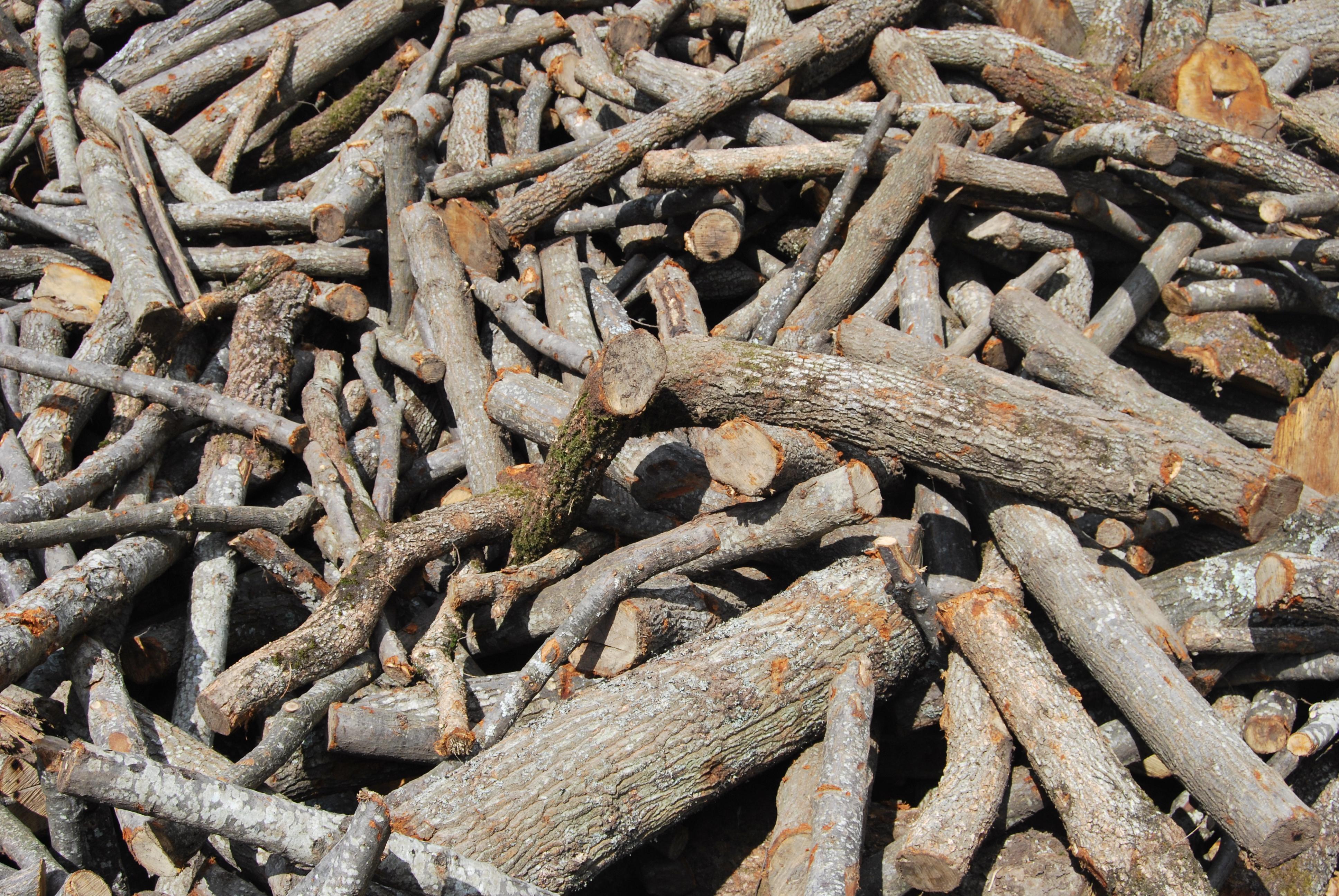 legna da ardere legno energia ceduo camino fuoco