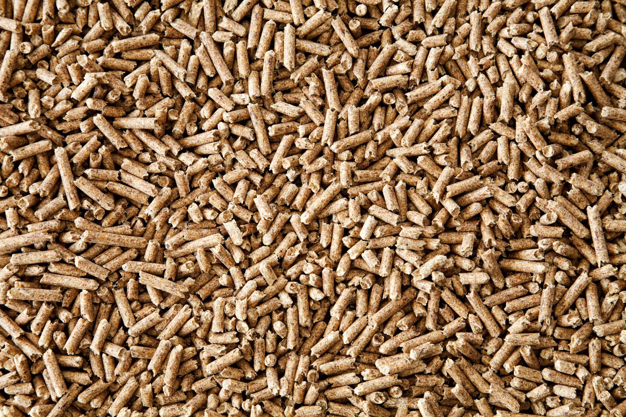 Wood pellets legno legna energia combustione