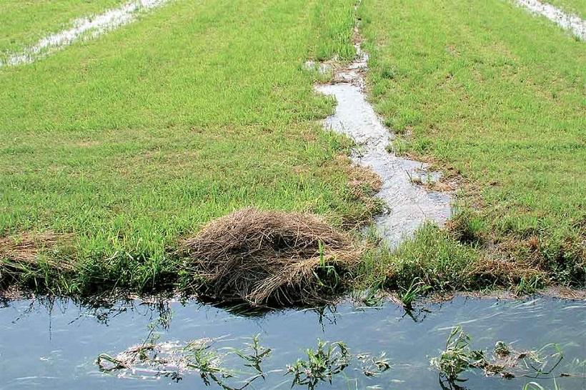 irrigazione acqua campo agricoltura terra scorrimento fosso