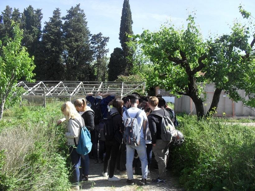 classi scuola formazione agrario agricoltura agronomi firenze